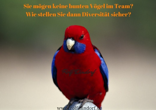 Diversity altersgemischte Teams Dindorf