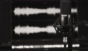 Podcast agile Verwaltung